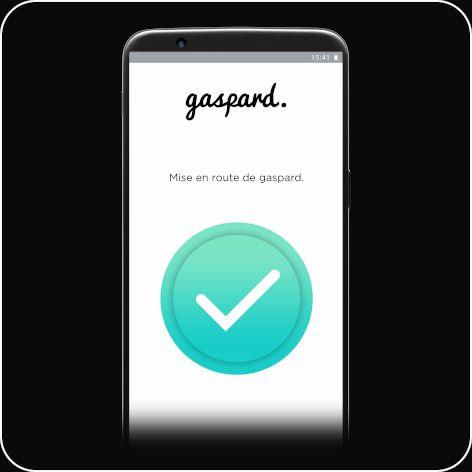 Etape 3 installation gaspard sur l'application gratuite mobile